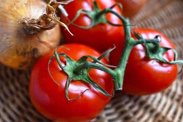 Unabhängig von Tradition oder Lieblingsrezept gehören Tomaten unbedingt in eine Lasagne.